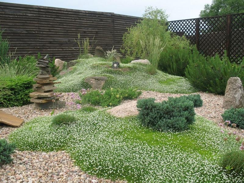 Каменно-травяная лужайка