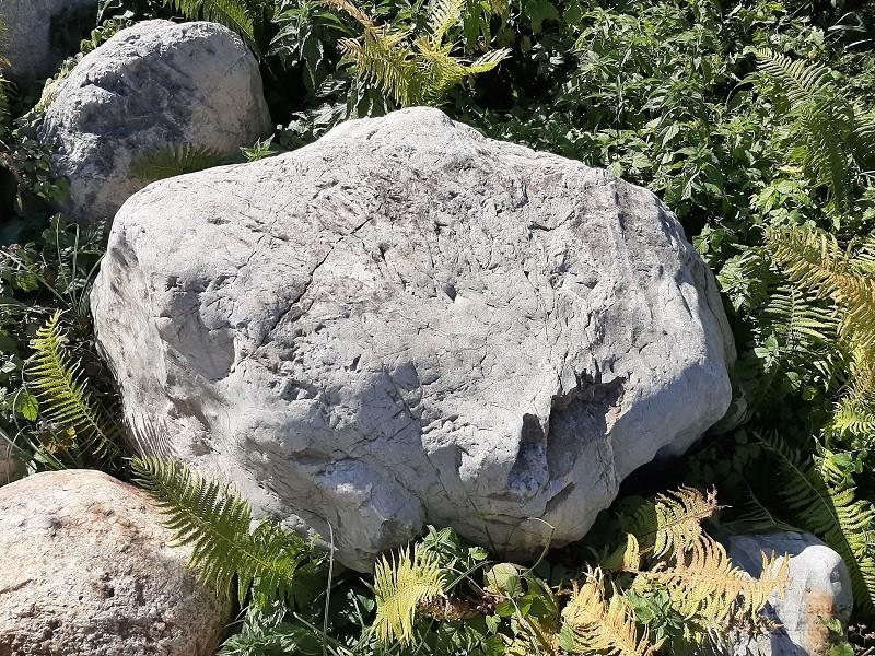 Купить камень большие гранитные окатанные валуны